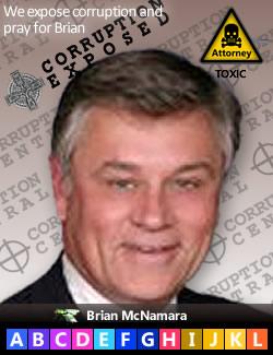 Brian J. McNamara, Patent Judge