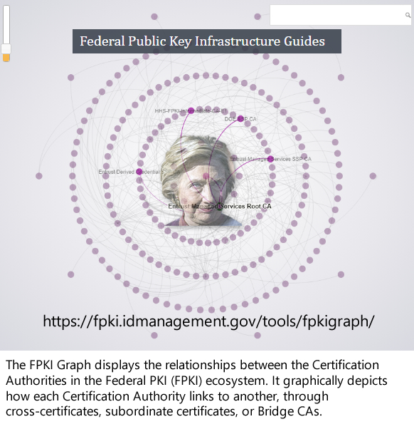 Hillary Clinton and the Rose Law Firm control the Federal Common Policy Group for issuing Internet browsing permissions