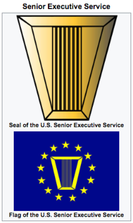 Senior Executive Service (SES) flag and logo