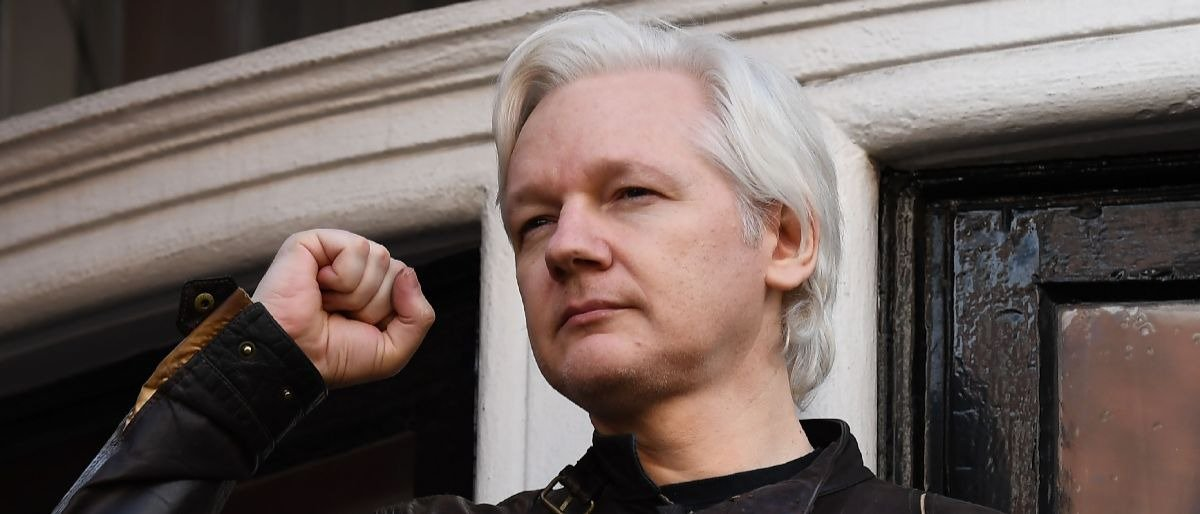Roger Stone. (Feb. 09, 2018). OP-ED: ROGER STONE: Free Julian Assange, Mr. President. The Daily Caller.