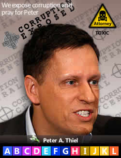 Peter A. Thiel, LinkedIn, Facebook
